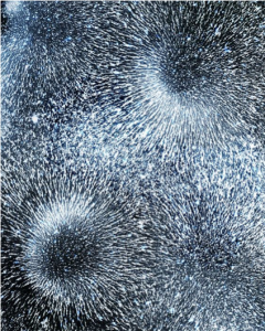 """Magnetic Fields II"", 2014 by Caleb Charland"